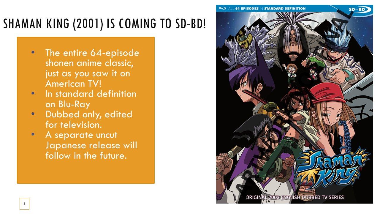 Shaman King va apărea pe BluRay!